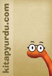 Illustrator CS3 (CD Ekli)