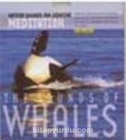 Balinaların Şarkısı