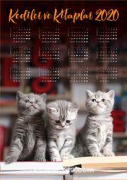 2020 Takvimli Poster - Kediler ve Kitaplar - Sevimli