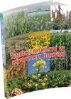 Enerji Bitkileri ve Biyoyakıt Üretimi