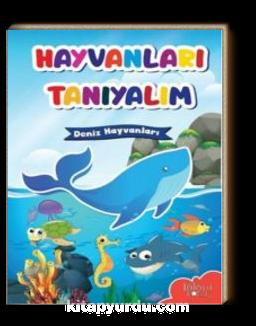 Deniz Hayvanları / Hayvanları Tanıyalım