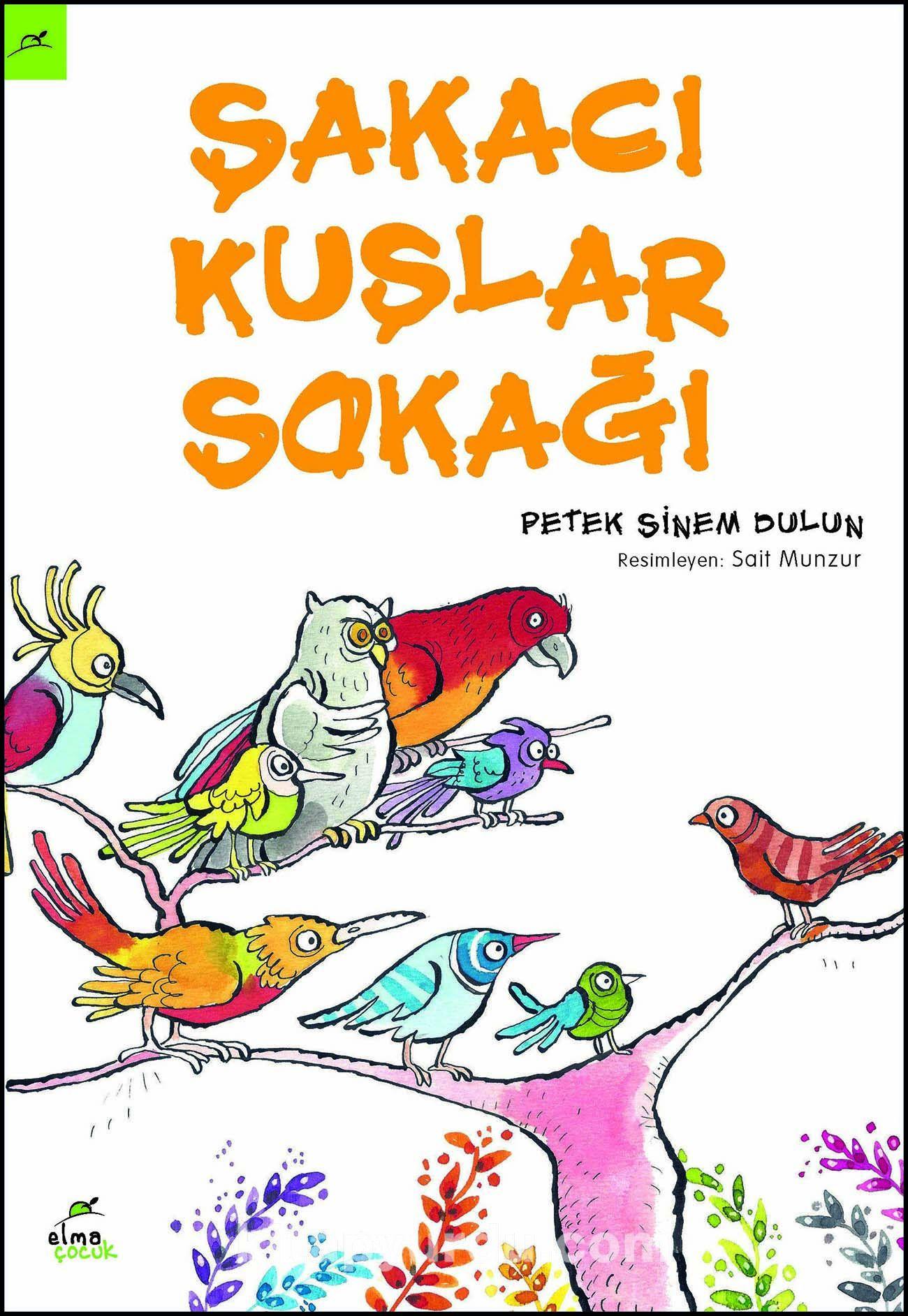 Şakacı Kuşlar Sokağı - Petek Sinem Dulun pdf epub