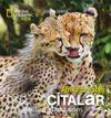 National Geographic Kids - Çitalar (Afrika'da Safari)