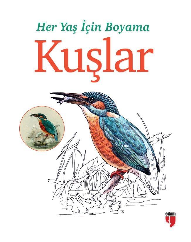 Her Yaş İçin Boyama - Kuşlar -  pdf epub