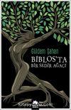 Biblos'ta Bir Sedir Ağacı