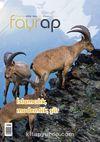 Fayrap Edebiyat Dergisi Haziran 2016 Sayı:85