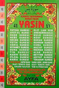 41 Yasin Türkçe Okunuşları ve Açıklamaları (Orta Boy-1. Hamur Kod:071) - Elmalılı Hamdi Yazır pdf epub