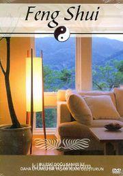 Feng Shui (DVD)