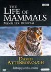 Memeliler Dünyası / The Life Of Mammals (4 DVD)