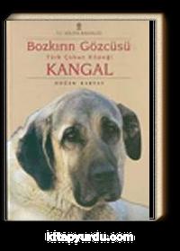 Bozkırın Gözcüsü Türk Çoban Köpeği Kangal
