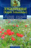 Kapalı Tohumlular / Angiospermae
