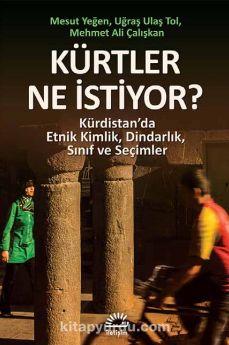 Kürtler Ne İstiyor? & Kürdistan'da Etnik Kimlik, Dindarlık, Sınıf ve Seçimler