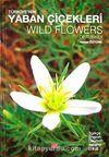 Türkiye'nin Yaban Çiçekleri & Wild Flowers Of Turkey