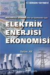 Elektrik Enerjisi Ekonomisi & Mühendisler, Ekonomistler ve İşletmeler İçin