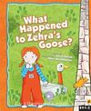 What Happened to Zehra's Goose?