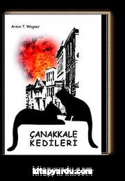 Çanakkale Kedileri