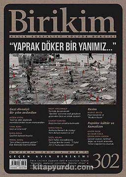 Birikim / Sayı:302 Yıl:2014 / Aylık Sosyalist Kültür Dergisi