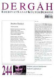 Dergah Edebiyat Sanat Kültür Dergisi Sayı:244 Haziran 2010