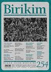 Birikim / Sayı:254  Yıl: 2010 / Aylık Sosyalist Kültür Dergisi