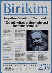 Birikim / Sayı:259  Yıl: 2010 / Aylık Sosyalist Kültür Dergisi