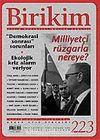 Birikim / Sayı: 223 Yıl: 2007 / Aylık Sosyalist Kültür Dergisi