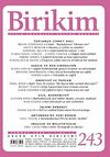 Birikim / Sayı:243  Yıl: 2009 / Aylık Sosyalist Kültür Dergisi