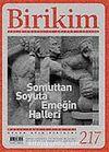 Birikim / Sayı: 217 Yıl: 2007 / Aylık Sosyalist Kültür Dergisi