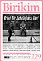 Birikim / Sayı: 229 Yıl: 2008 / Aylık Sosyalist Kültür Dergisi