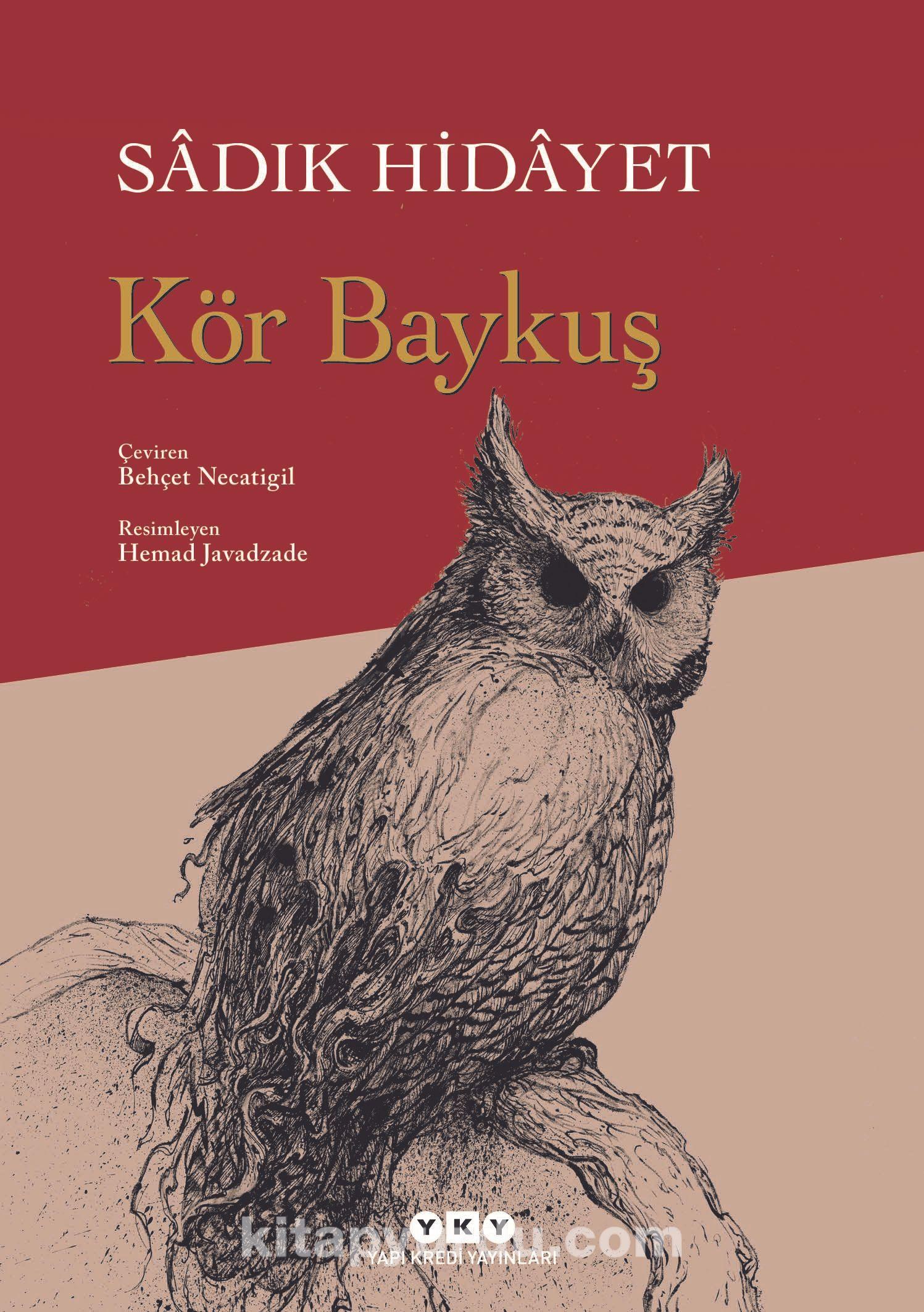 Image result for Kor baykuş romanı