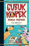 Çubuk Köpek Donut Peşinde