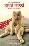 Kedi Hissi & Kedilerin Sırları Çözülüyor