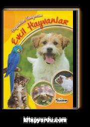 Evcil Hayvanlar / Hayvanları Tanıyorum