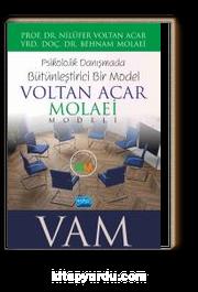 Psikolojik Danışmada Bütünleştirici Bir Model: Voltan Acar-Molaei (Vam) Modeli
