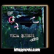 Veda Busesi 34U442