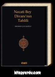 Necati Bey Divanı'nın Tahlili