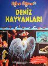 Deniz Hayvanları / Eğlen Öğren