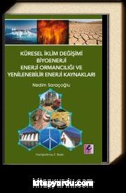 Küresel İklim Değişimi, Biyoenerji, Enerji Ormancılığı ve Yenilenebilir Enerji Kaynakları