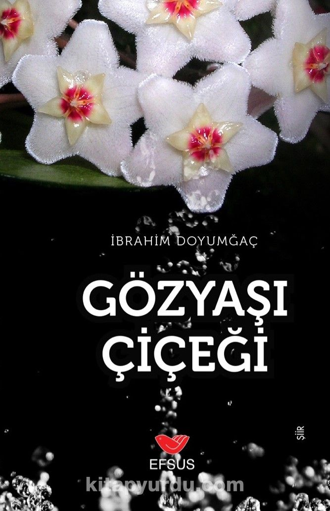Gözyaşı Çiçeği - İbrahim Doyumgaç pdf epub