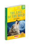 The Call of the Wild / Level 3