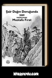 Şair Dağın Doruğunda 2010