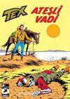 Tex Klasik Seri 44 / Ateşli Vadi - Kızılderili Ajanı
