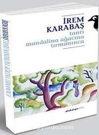 Tanrı Mandalina Ağacına Tırmanınca - İrem Karabaş pdf epub