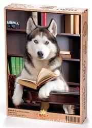 Kitap Okuyan Husky Ahşap Puzzle 1000 Parça (KT09-M)