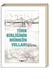 Türk Birliğinin Mümkün Yolları