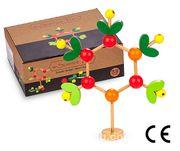 Montessori Ahşap Zeka Oyunları / w-Science Tree