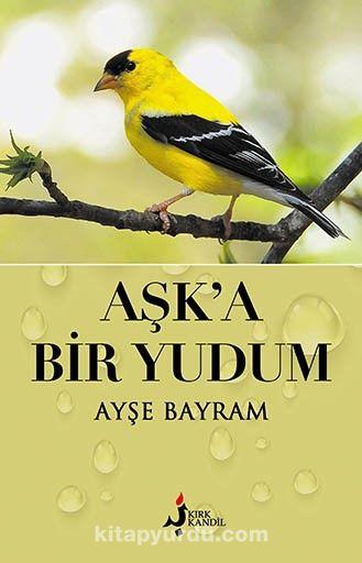 Aşk'a Bir Yudum - Ayşe Bayram pdf epub