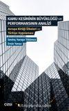 Kamu Kesiminin Büyüklüğü ve Performansının Analizi & Avrupa Birliği Ülkeleri ve Türkiye Uygulaması