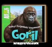 Animal Planet Doğadaki Vahşi Yaşamım Goril