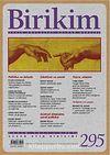 Birikim / Sayı:295 Yıl: 2013 / Aylık Sosyalist Kültür Dergisi
