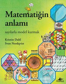 Matematiğin Anlamı: Sayılarla Model Kurmak